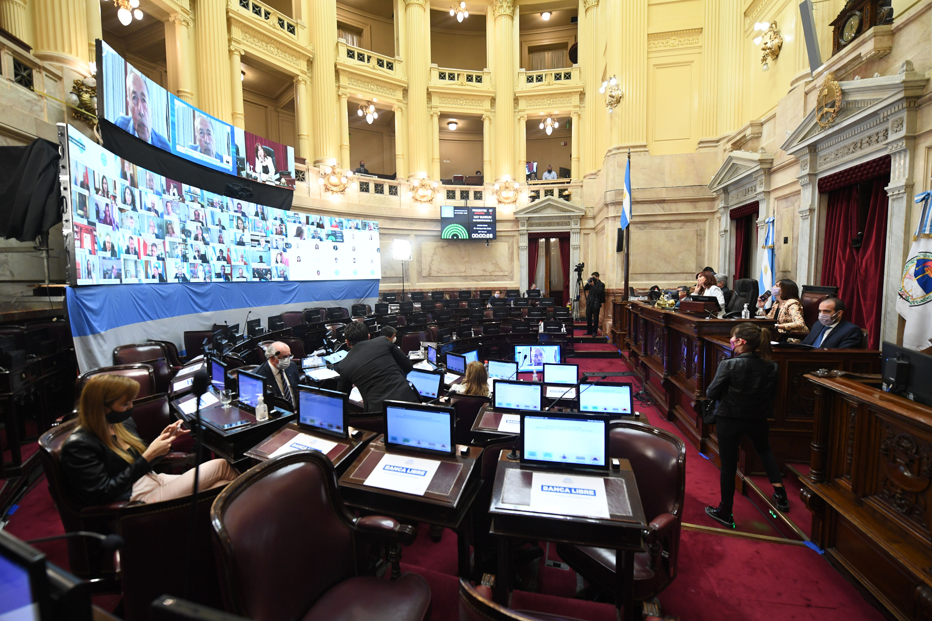 Sesión ordinaria remota del Honorable Senado de la